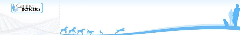 Canine genetics