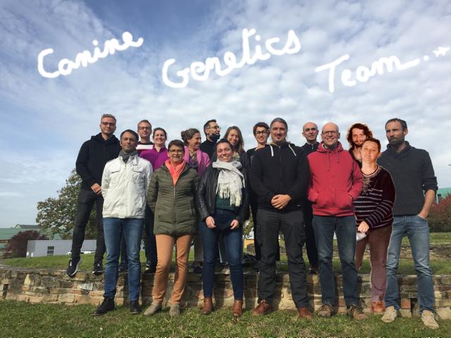 Equipe génétique du chien